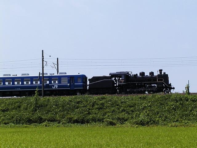 012-c56160-takatsuki-kawake.jpg