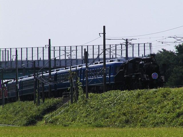 016-c56160-takatsuki-kawake.jpg