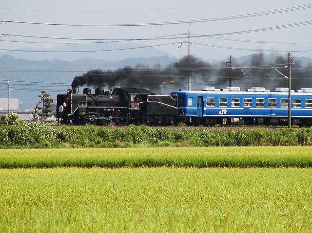 030-c56160-nagahama-torahime.jpg