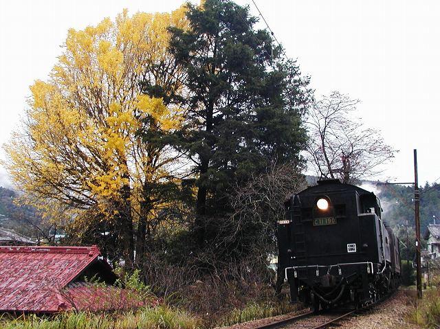 111-c11190-tanokuchi.jpg