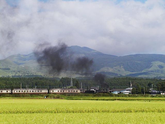 117-58654-akamizu-tateno.jpg