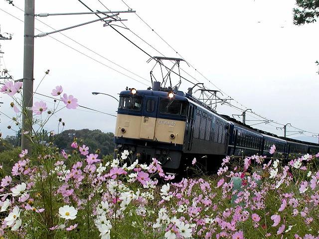 128-ef6442-tazawa-matsumoto.jpg