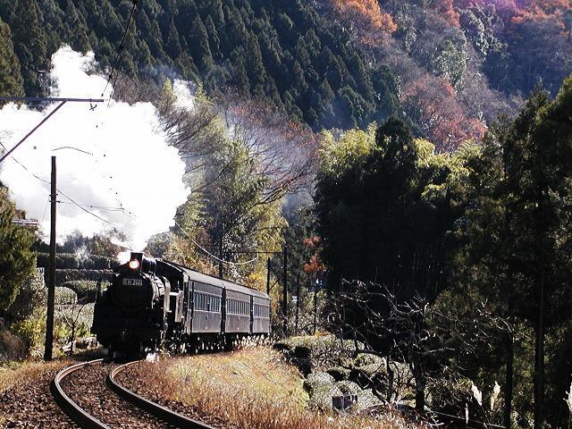 129-c11312-shiogo-shimoizumi.jpg