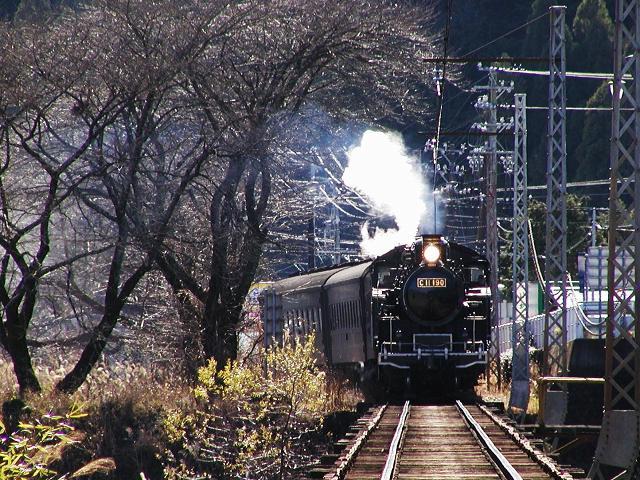 140-c11190-owada-ieyama.jpg