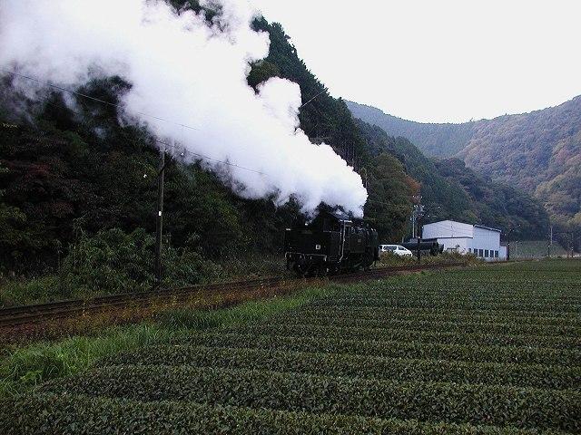 178-c11190-fukuyo-owada.jpg