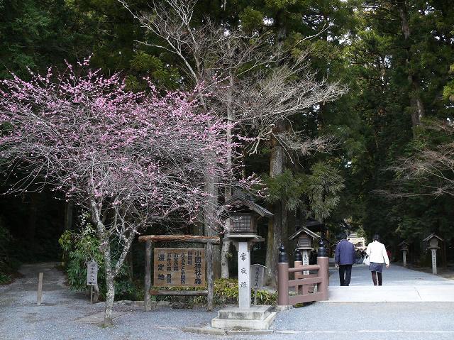 10_小国神社・参道入り口