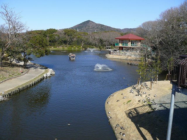 P1110004_大沢池