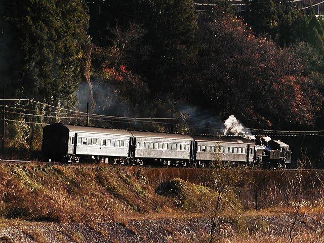 219-c11312-shiogo-jina.jpg