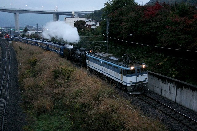 c006-ef6462+d51498-okaya-midoriko.jpg