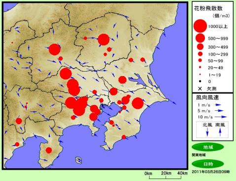 今日の関東地方は花粉がすごそうです