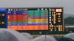 SN3K0345_convert_20100525144323.jpg