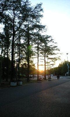 20100516niki4a.jpg