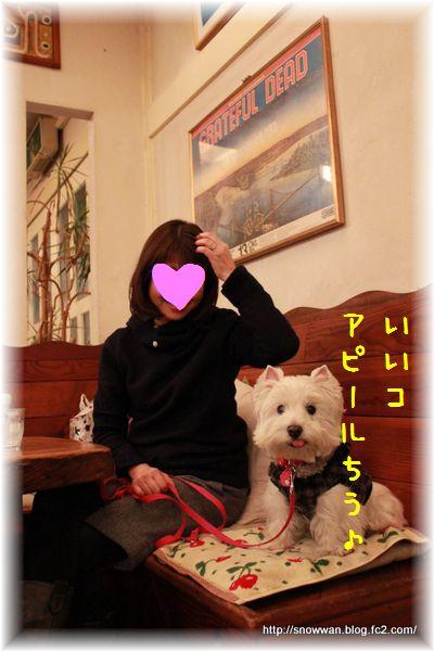 128_20120409110858.jpg