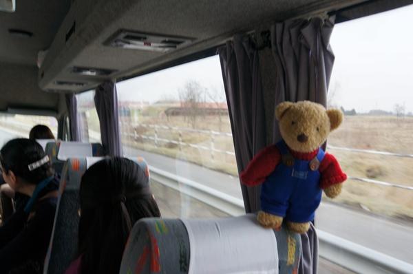 バス車内くま