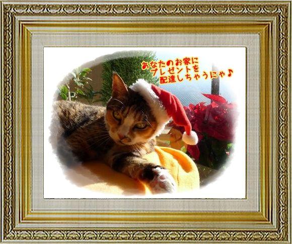 ねこ 猫 クリスマス祭り28すなふ家の『プレゼント配達猫』