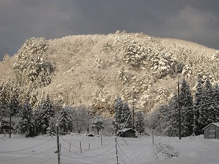 20111210-11生杉 008