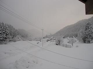 20120107生杉 009