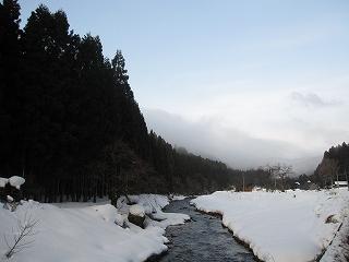 20120122生杉 002