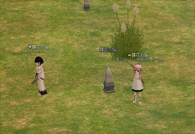 mabinogi_2010_01_03_001.jpg