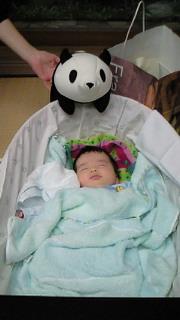 パンダと壮史朗