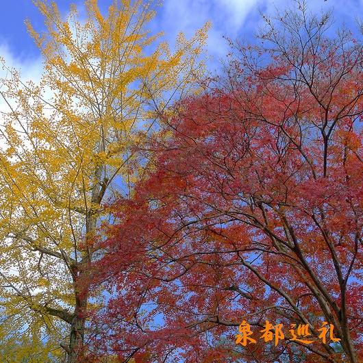 20091114nanzen01.jpg