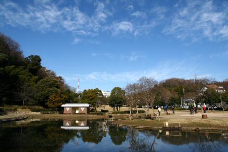 20100123山田富士公園