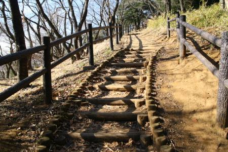 20100123山田富士公園4