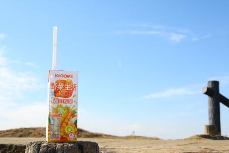 20100123山田富士公園5
