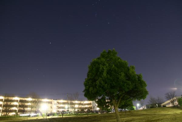 20100123東山田公園1