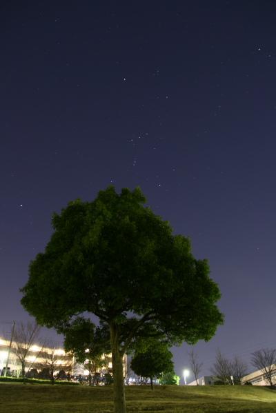 20100123東山田公園