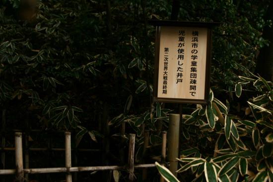 20100211正覚寺4