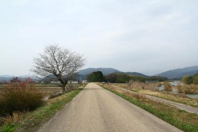 20100320雨森村2
