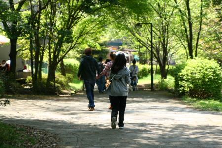 20100425せきれいの道5