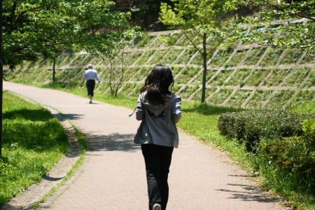 20100425せきれいの道2