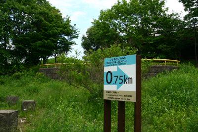 20100515都筑緑道4
