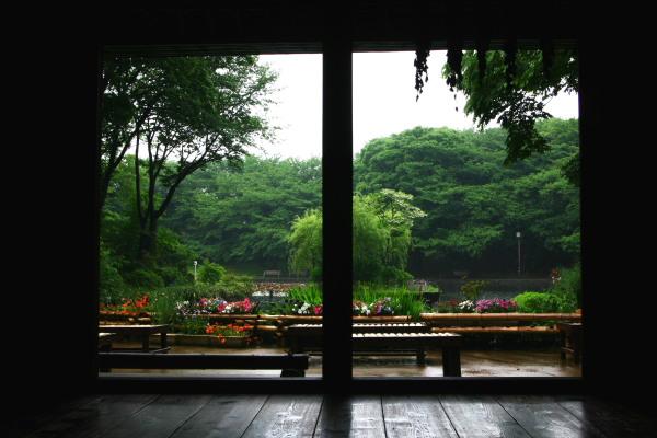 20100523せせらぎ公園4