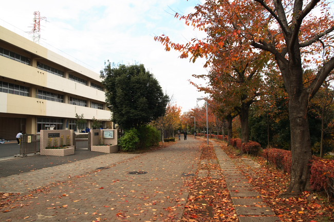 20101121東山田公園3