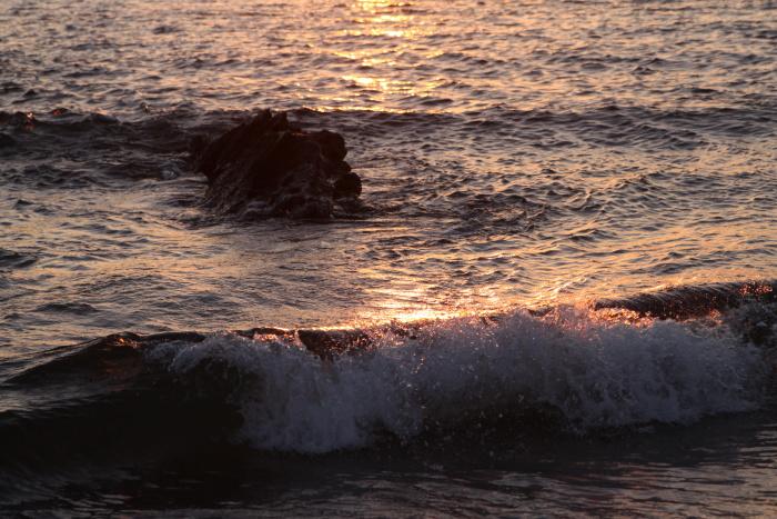 20101211三浦海岸7