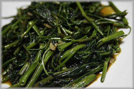 2011.7.26 空芯菜