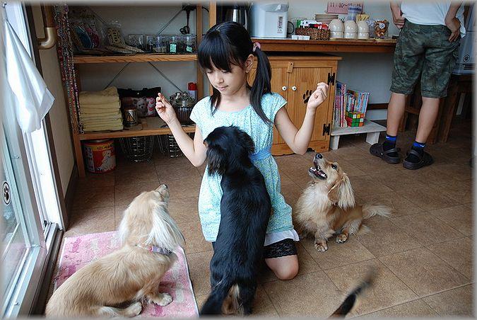 2011.9.20 ティーちゃん