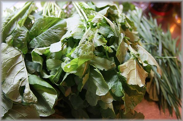2011.11.13 お野菜