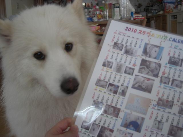 マリアカレンダー