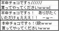 11_20100219043148.jpg