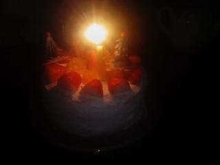 CHRISTMAS CAKE_01_2009-12-24