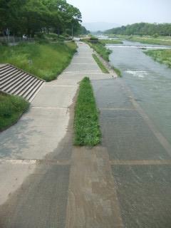 洪水_03_2010-05-25C