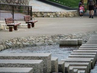 堀川に飛び石発見!!_2010-05-15