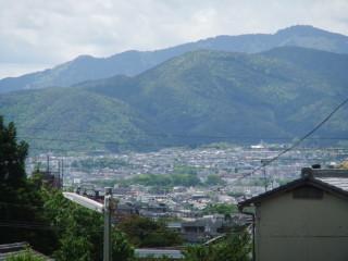 音羽川(後安堂橋付近)(7)_2010-05-13