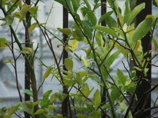 雨天_01_2010-04-22