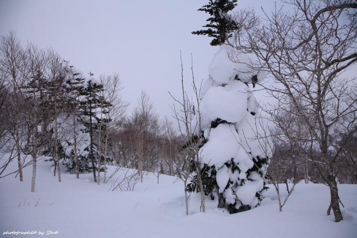 shiraoidake-2012 (8)