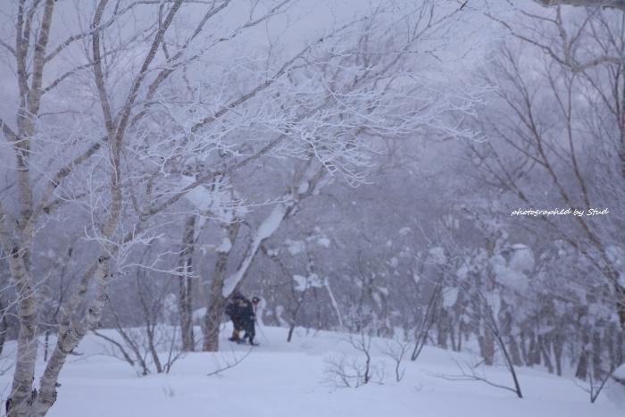 shiraoidake-2012 (11)